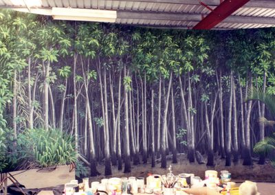 Gondwana Mangroves