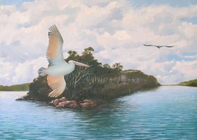 Pelican Territory