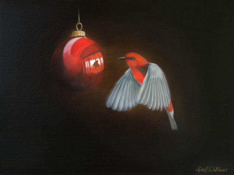 Scarlet Honeyeater - 2010 Oils on Red Cedar